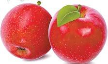 사과 껍질 색깔과 맛은 별개예요